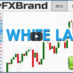 3 Reasons You Shouldn't Start a Forex White Label