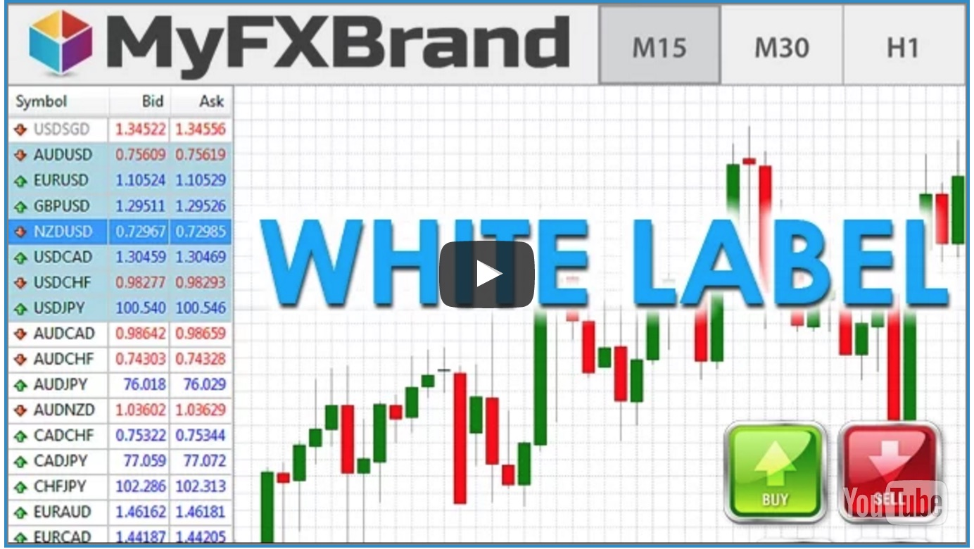 Forex white label definition